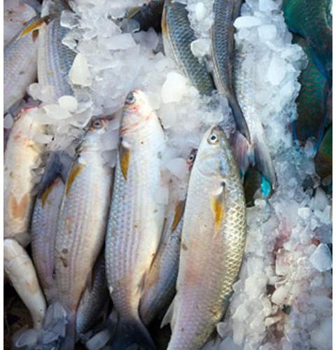 Для морепродуктов
